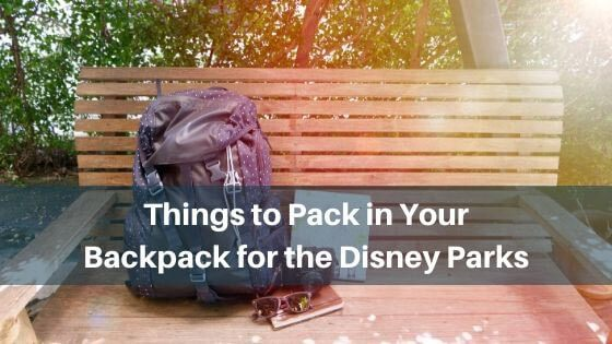 Things to Pack in Your Backpack for the Disney Parks